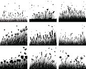 nine meadow backgrounds