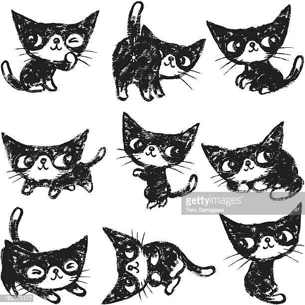 Nine poses of kitten