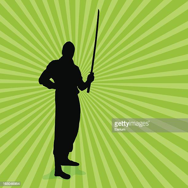 ninja prowess with sword - combat sport stock illustrations