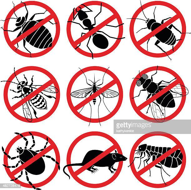no bugs - pests stock illustrations