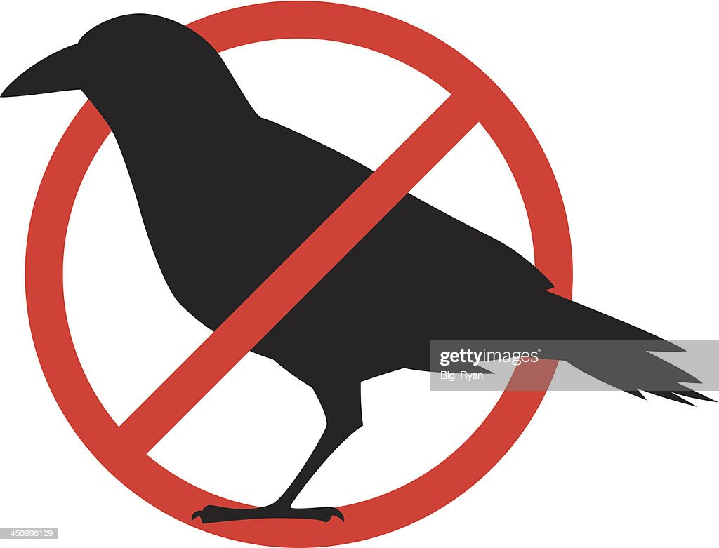 no crows