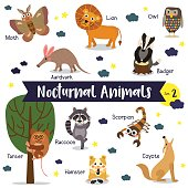 Nocturnal Animal cartoon with animal name vector illustration. Set 2