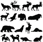 North American animals silhouette set 2