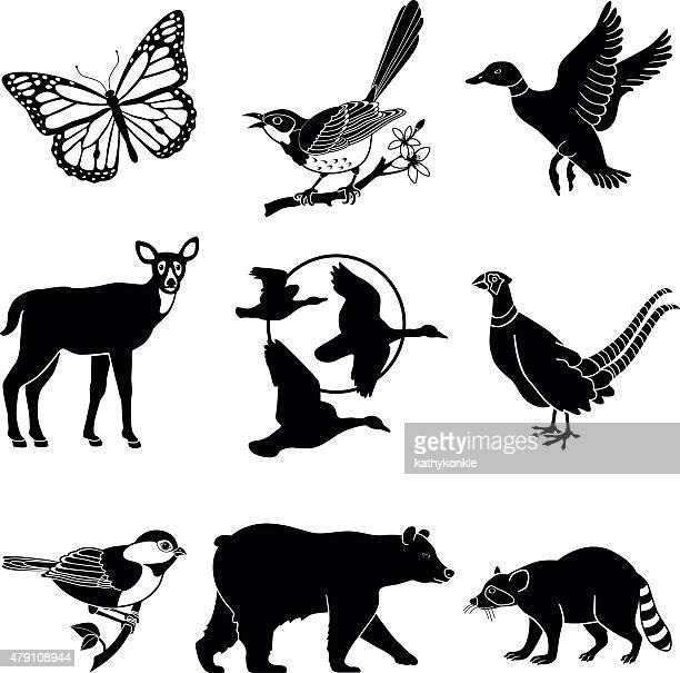 north american wildlife set in black and white - mockingbird stock illustrations, clip art, cartoons, & icons