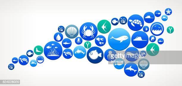 Carolina del Norte Sea y Patrón de botón de Vida Marina