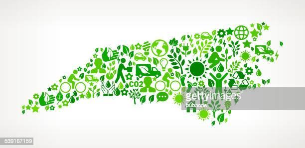 north carolina state green environmental & technolohy vector interface icon - north carolina us state stock illustrations