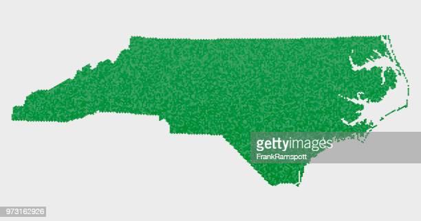 bildbanksillustrationer, clip art samt tecknat material och ikoner med north carolina usa statliga karta grön hexagon mönster - north carolina amerikansk delstat