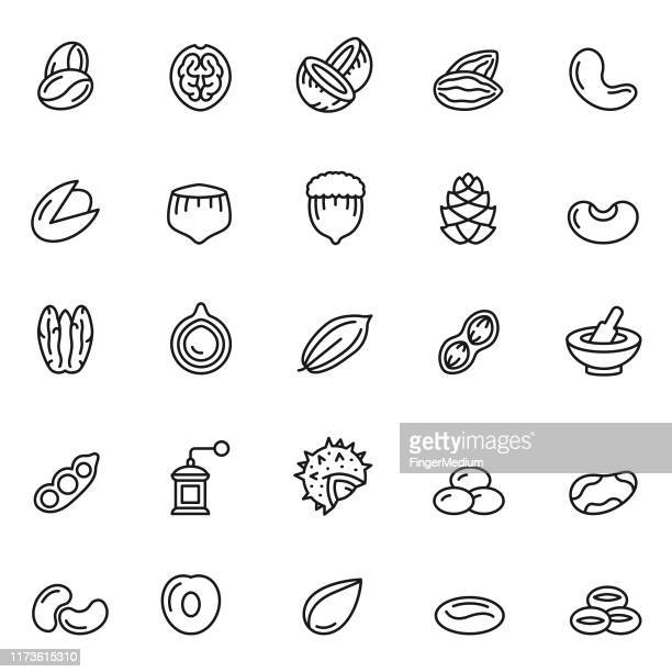 nuts icon set - seed stock illustrations