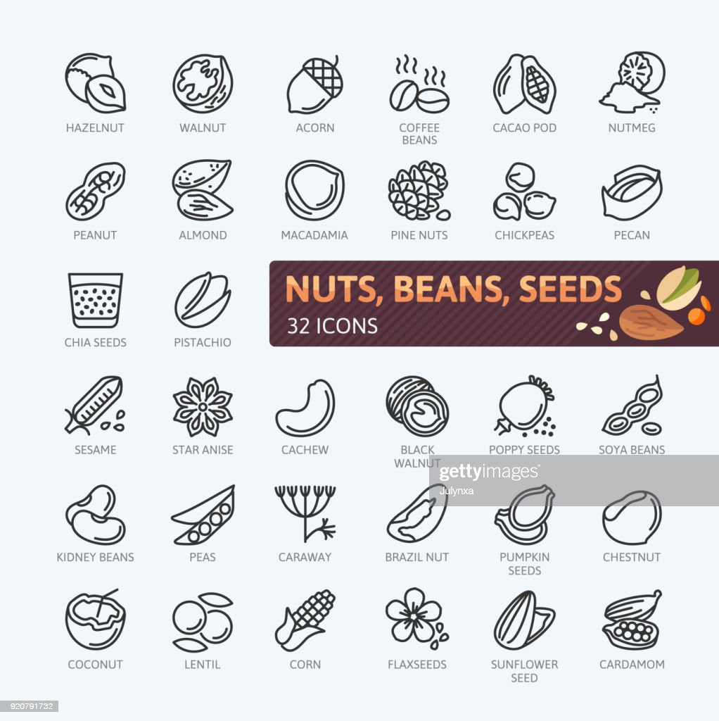 Nuts, seeds and beans elements - simple vector icon collection.