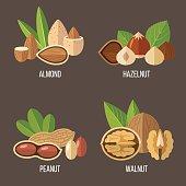 Nuts set
