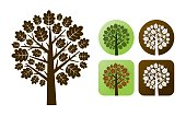 Oak tree branhes autumn leaves nature icons