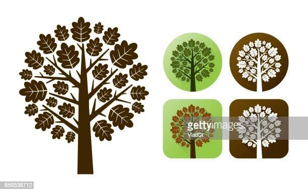 oak tree branhes autumn leaves nature icons - oak leaf stock illustrations