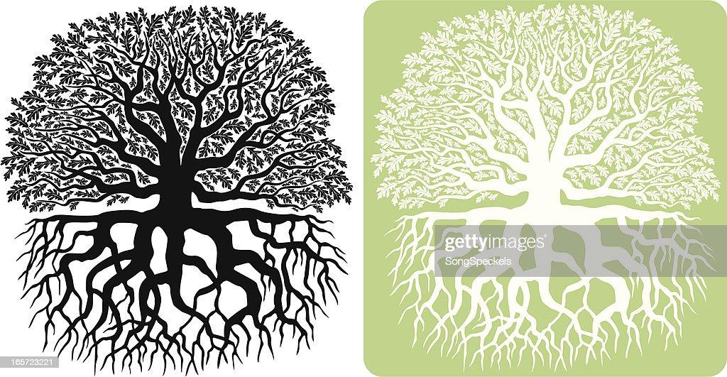 Oak Tree Silhouette : stock illustration