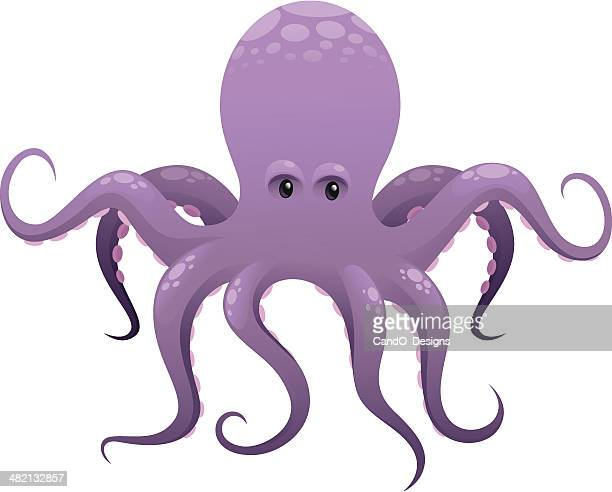 octopusのイラスト素材と絵 getty images