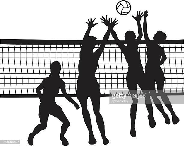 illustrazioni stock, clip art, cartoni animati e icone di tendenza di pallavolo - pallone da pallavolo