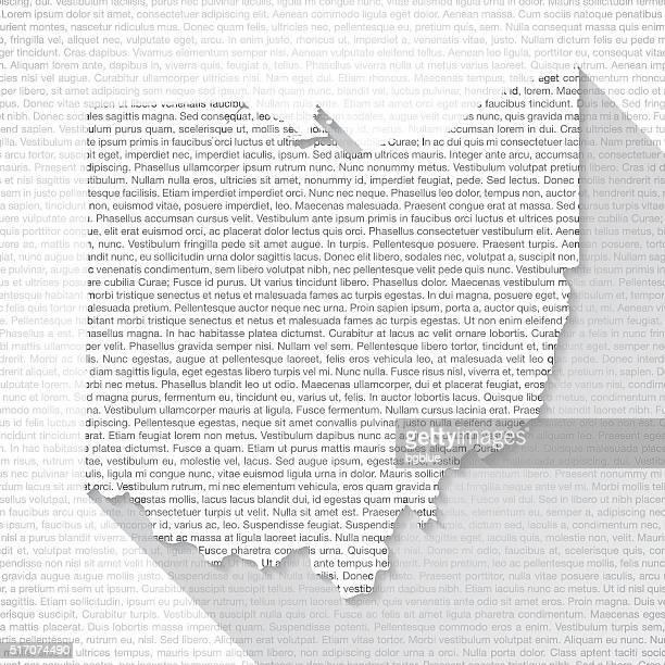 ilustrações, clipart, desenhos animados e ícones de ohio no mapa em plano de fundo do texto de longa sombra - lorem ipsum