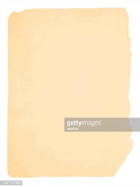 alte verblasste hellbraune oder beigefarbige schleifwand strukturiertvektor hintergründe - papyrus stock-grafiken, -clipart, -cartoons und -symbole