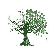 Old Tree with Green Leafs, Roots. Vector Illustration.