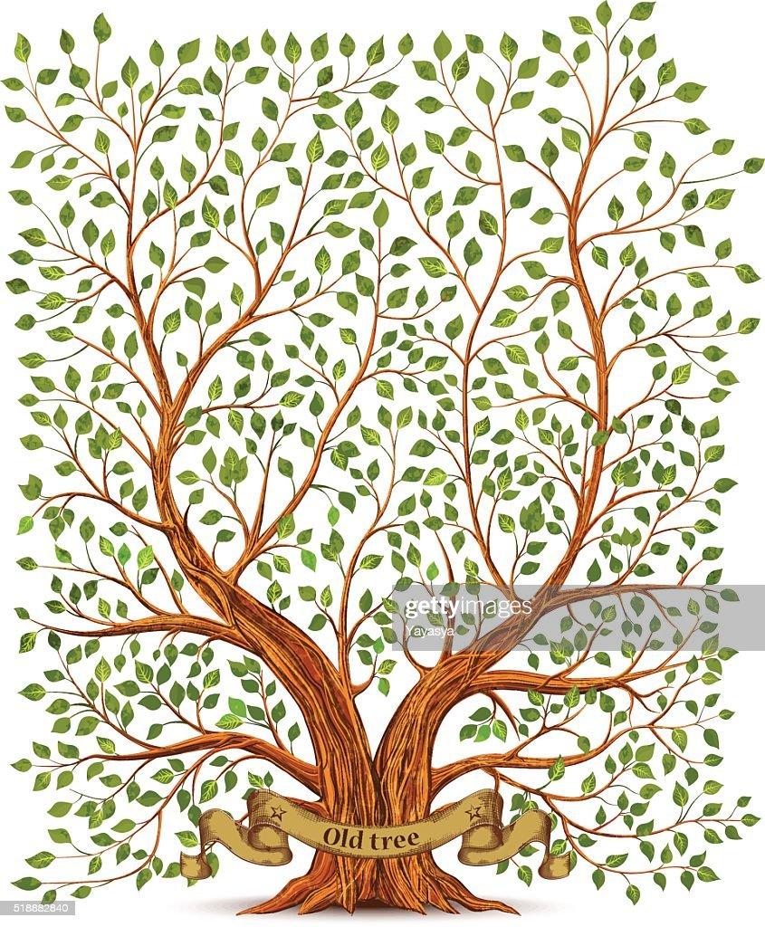 Old vintage tree vector illustration
