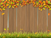 old wooden fence autumn tree and grass