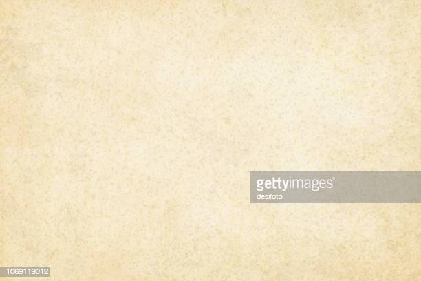 old yellowish cream beige colored grainy effect wooden, wall texture grunge vector background- horizontal - illustration - cereal plant stock illustrations