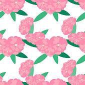 Oleander flower seamless background. Pink, flowers on white. Design element stock vector illustration