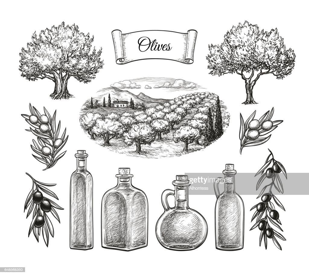 Olive big set.