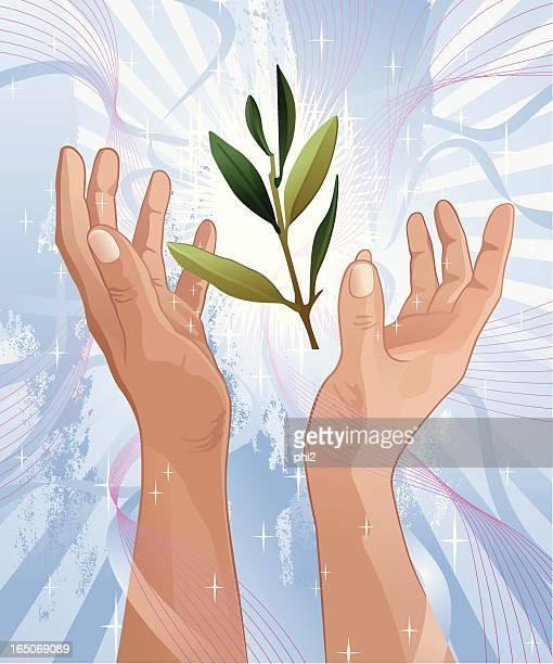 ilustraciones, imágenes clip art, dibujos animados e iconos de stock de olive branch entre manos vector elogios - rama de olivo