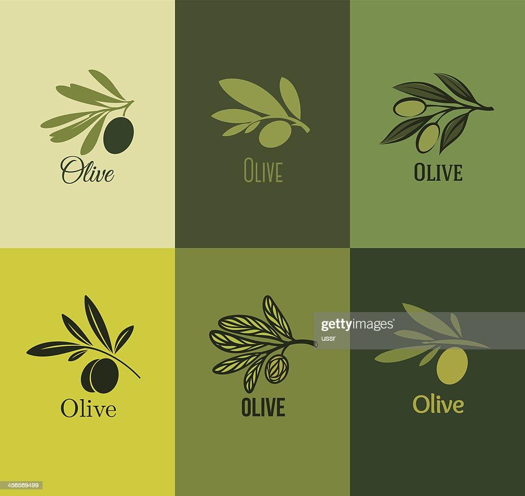 Olive branch. Set of labels