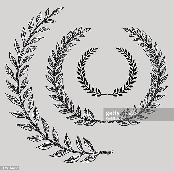 olive branch - classical greek style stock illustrations