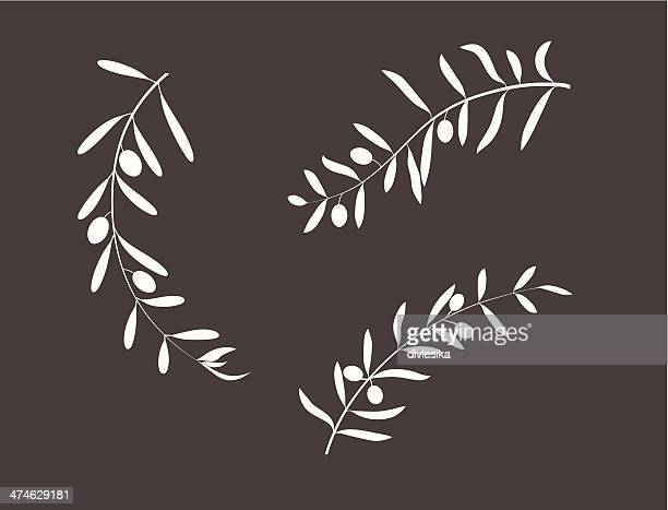 olive branch - olive branch stock illustrations