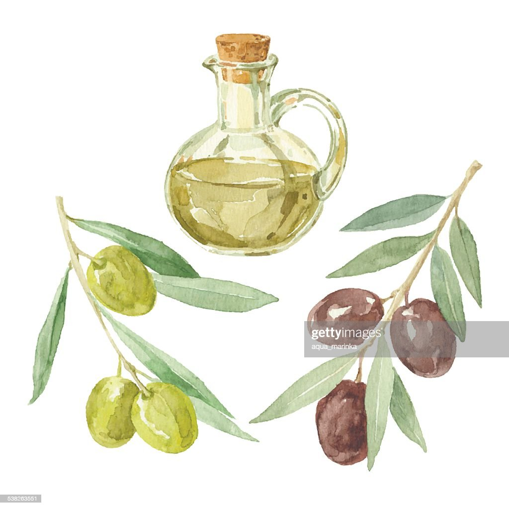 Olive branches and a bottle  by watercolor.