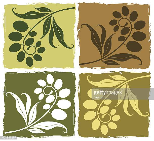 olive branches  set - olive branch stock illustrations