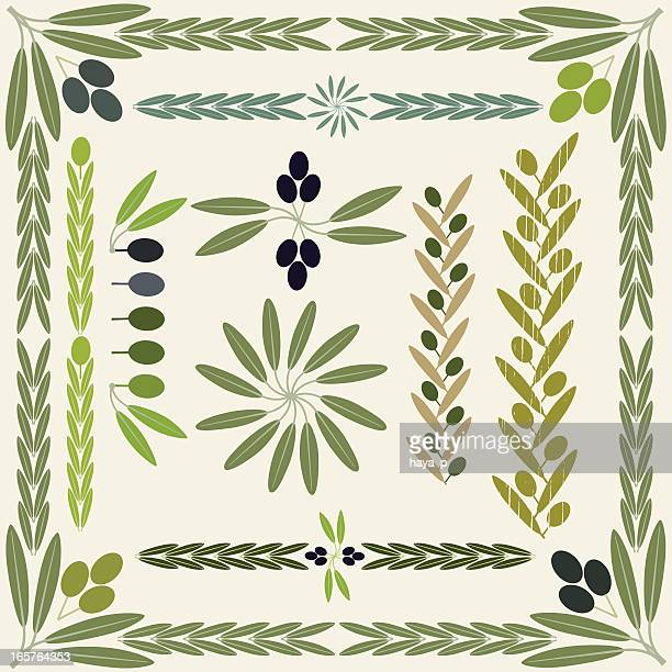 olive fruit and branch collection - olive branch stock illustrations