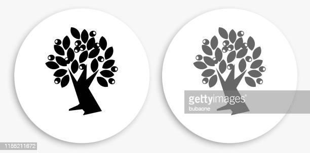 illustrations, cliparts, dessins animés et icônes de olive tree noir et blanc icône ronde - olivier