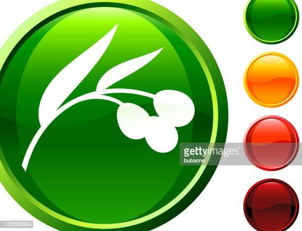 olive tree branch internet icon
