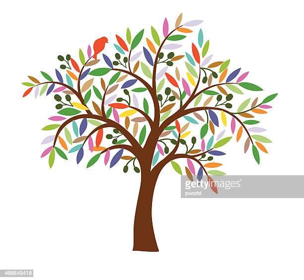 illustrations, cliparts, dessins animés et icônes de olive tree. - olivier
