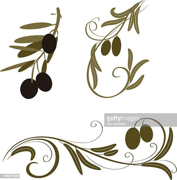 olive - green olive fruit stock illustrations