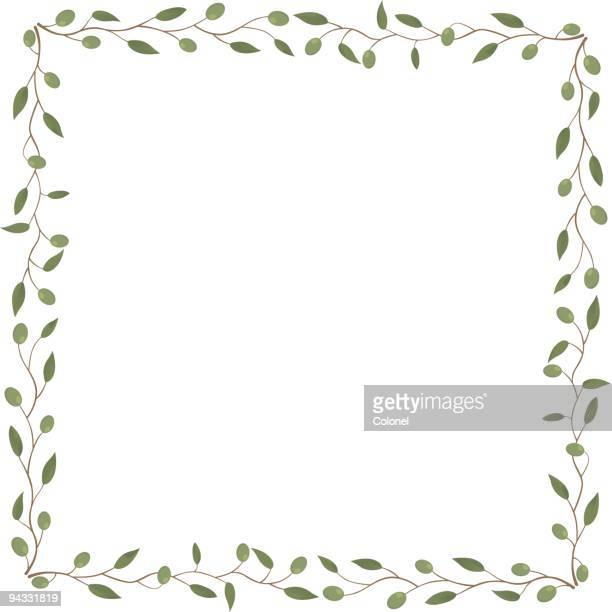 Olives 01 (vector & jpg)