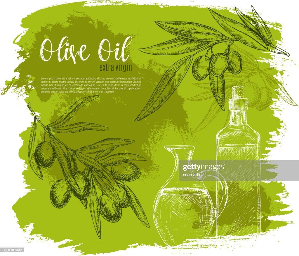 Olives and olive oil poster vector sketch
