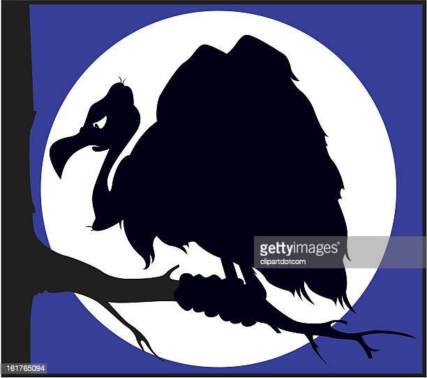 Ominous Vulture Silhouette