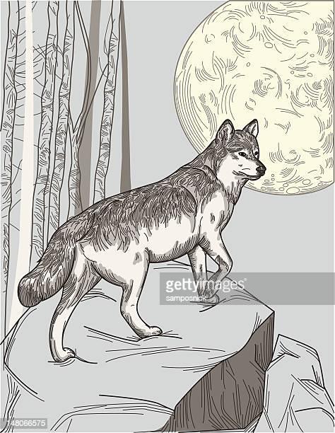 Ein Wolf Moon
