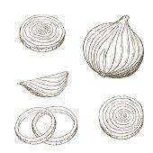 Onion  rings set