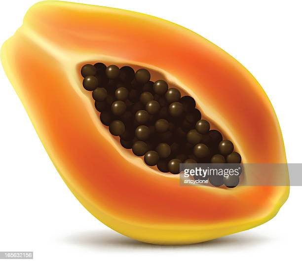 Ilustraciones De Stock Y Dibujos De Papaya Getty Images Watermelon Wallpaper Rainbow Find Free HD for Desktop [freshlhys.tk]