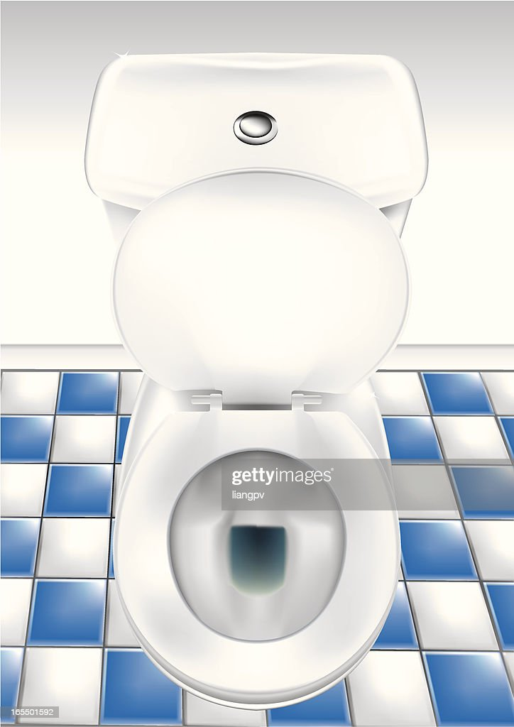 Open toilet bowl in bathroom with blue and white hone