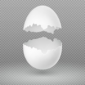Opened white egg with broken shell isolated vector illustration