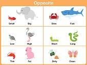 Opposite with animals for preschool - Worksheet for education