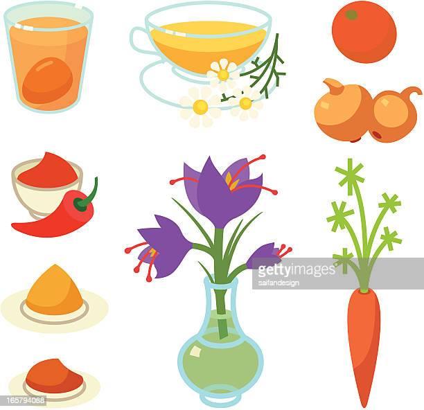ilustraciones, imágenes clip art, dibujos animados e iconos de stock de naranja y amarillo tinte natural de huevo - planta de manzanilla