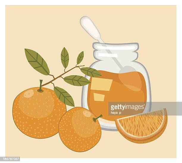 orange jam and oranges - marmalade stock illustrations, clip art, cartoons, & icons