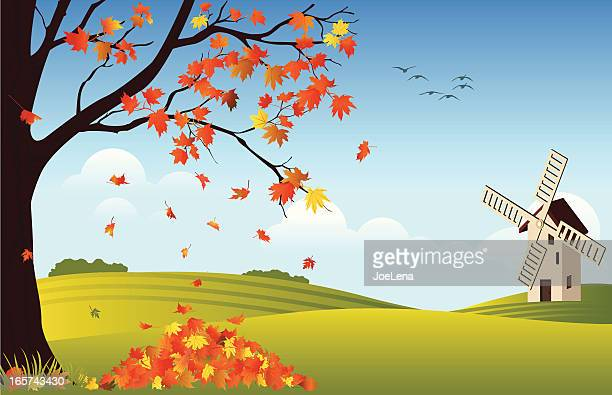 Orange leaves falling off tree in fall with windmill in rear